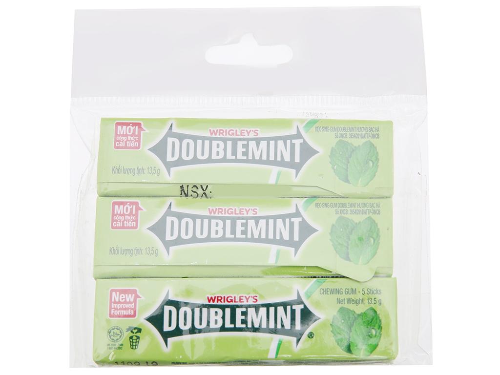 doubleming-chewing-gum-peppermint-flavor-bar-5-sticks-x-13-5g